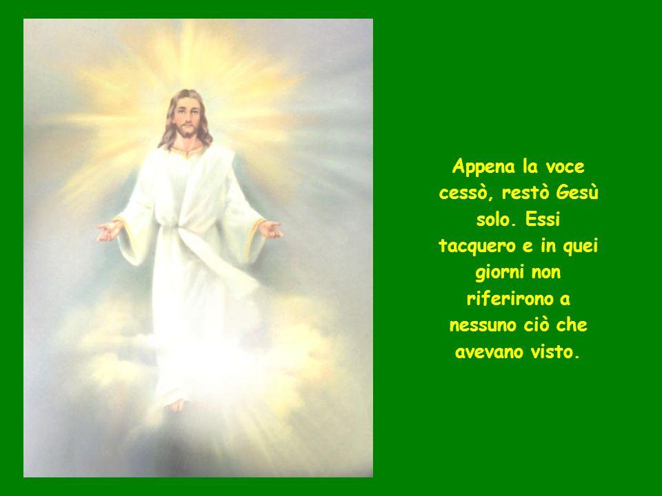 Appena la voce cessò, restò Gesù solo