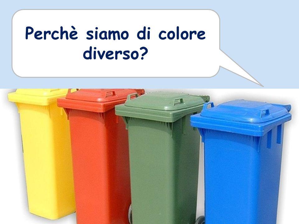 Perchè siamo di colore diverso