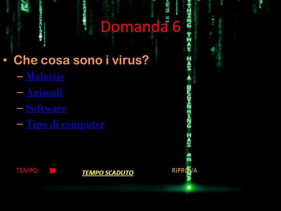 Domanda 6 Che cosa sono i virus Malattie Animali Software
