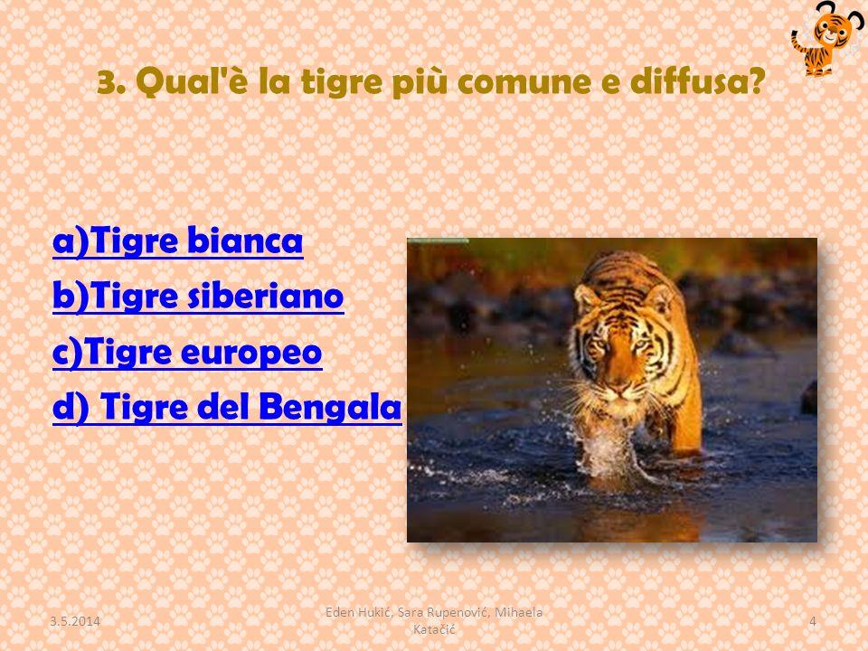 3. Qual è la tigre più comune e diffusa