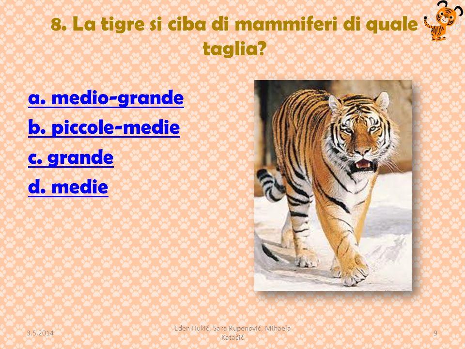 8. La tigre si ciba di mammiferi di quale taglia