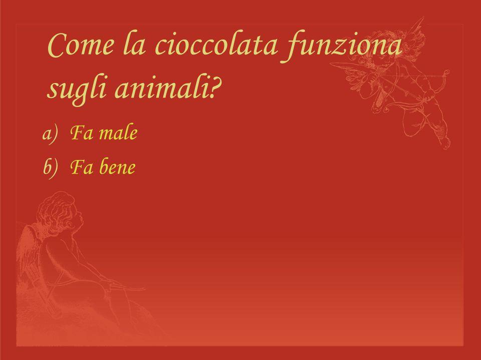 Come la cioccolata funziona sugli animali