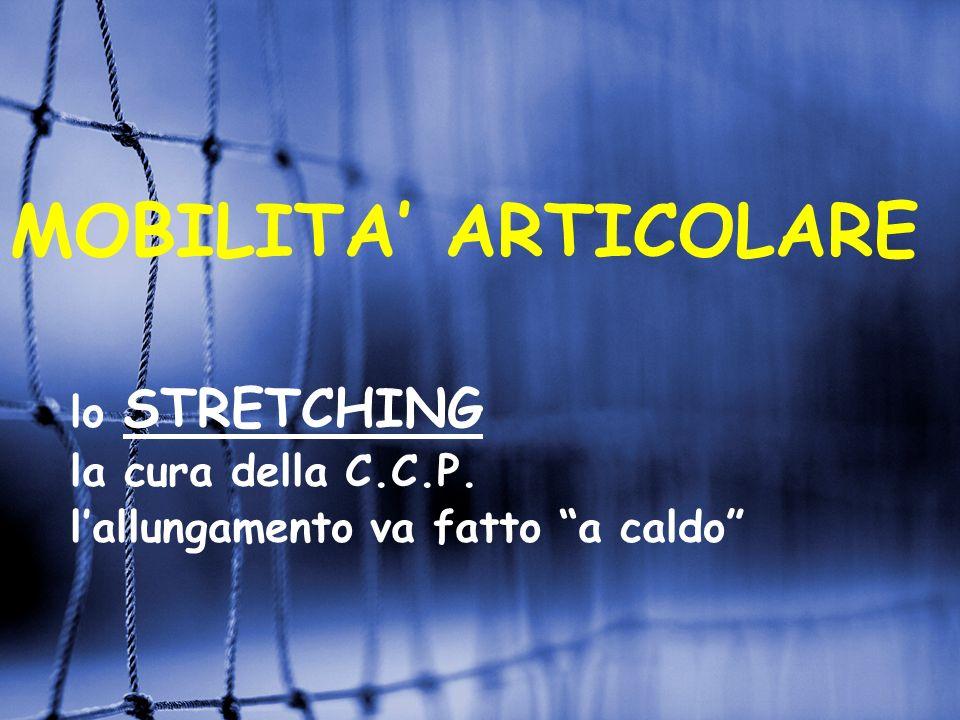 MOBILITA' ARTICOLARE lo STRETCHING la cura della C.C.P.