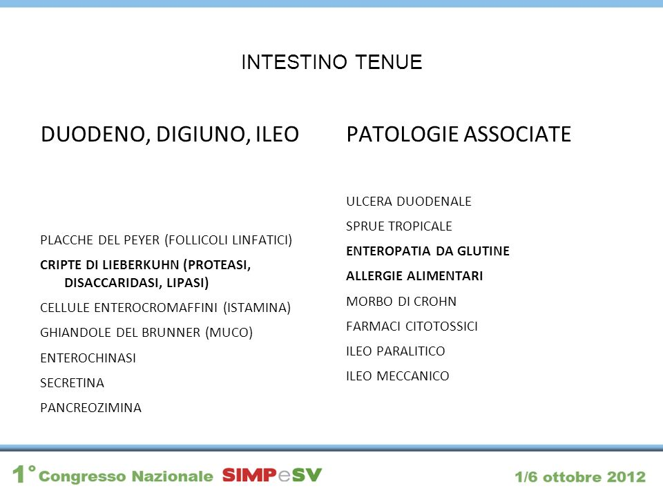 DUODENO, DIGIUNO, ILEO PATOLOGIE ASSOCIATE INTESTINO TENUE