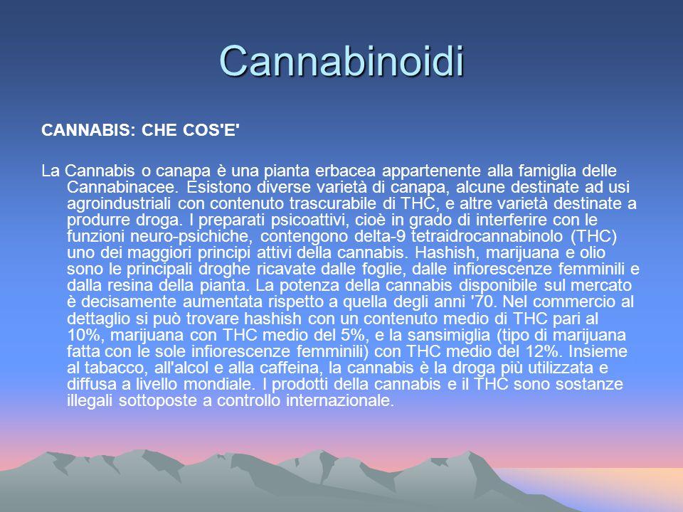 Cannabinoidi CANNABIS: CHE COS E