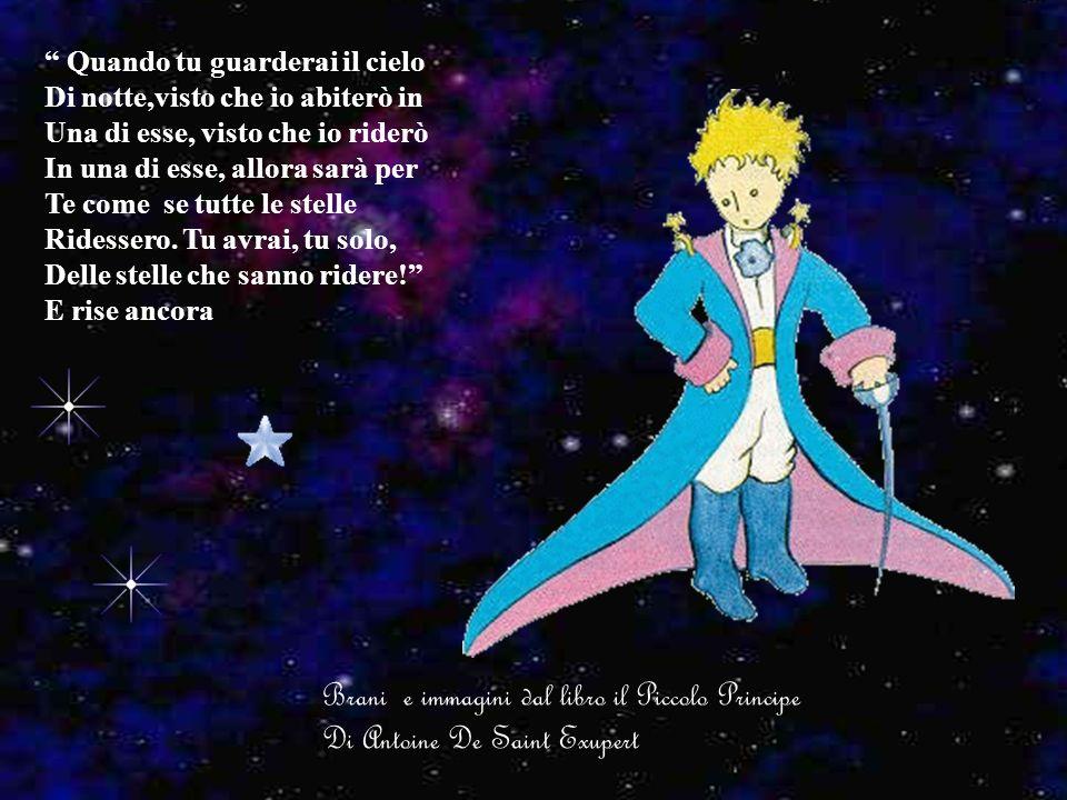Brani e immagini dal libro il Piccolo Principe