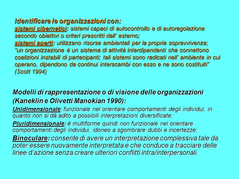 Modelli di rappresentazione o di visione delle organizzazioni