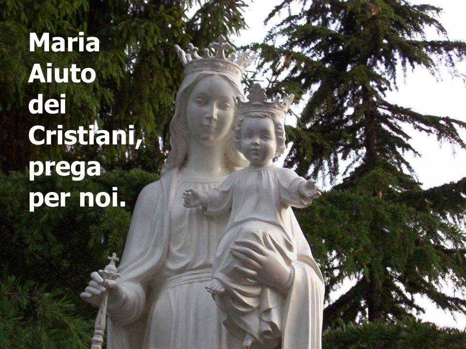 Maria Aiuto dei Cristiani, prega per noi.