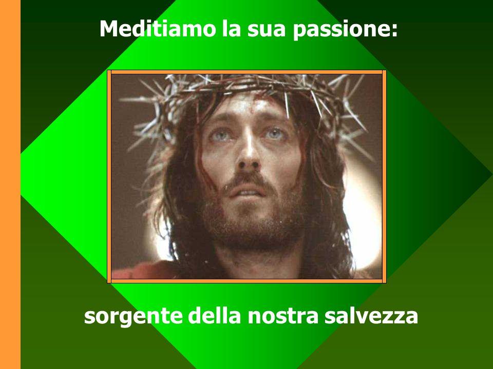 Meditiamo la sua passione: sorgente della nostra salvezza