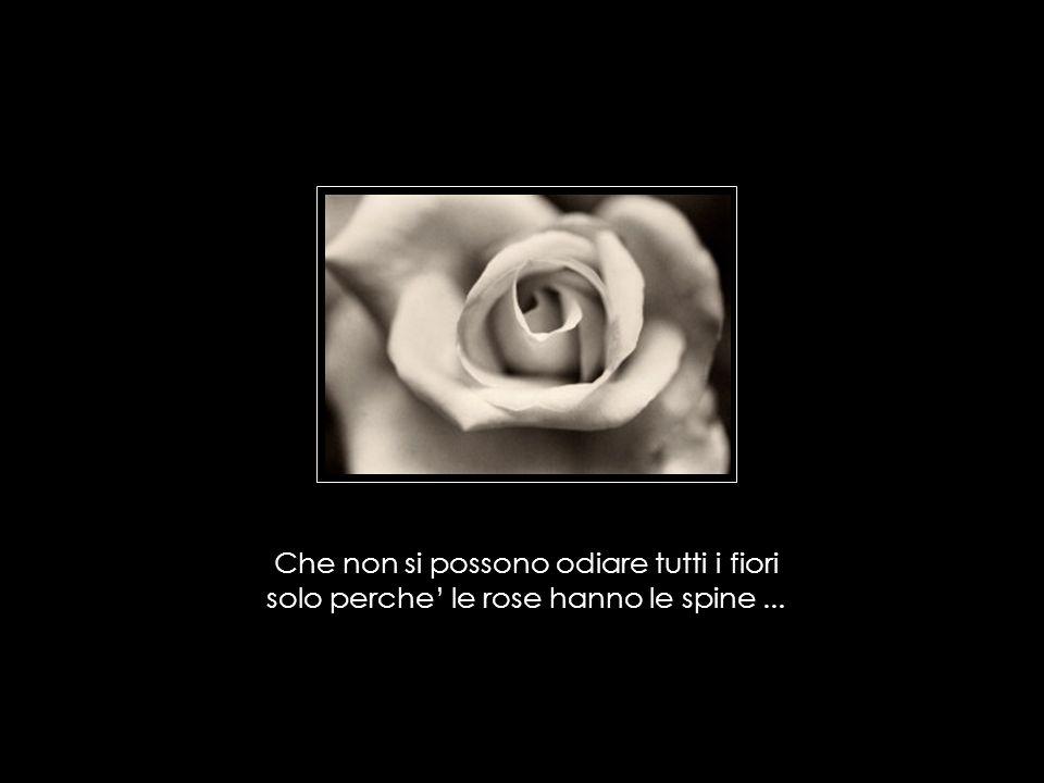 Che non si possono odiare tutti i fiori solo perche' le rose hanno le spine ...