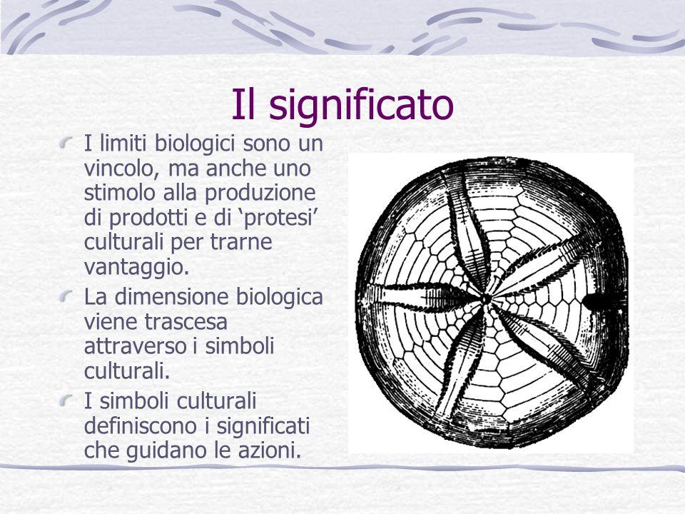Il significato I limiti biologici sono un vincolo, ma anche uno stimolo alla produzione di prodotti e di 'protesi' culturali per trarne vantaggio.
