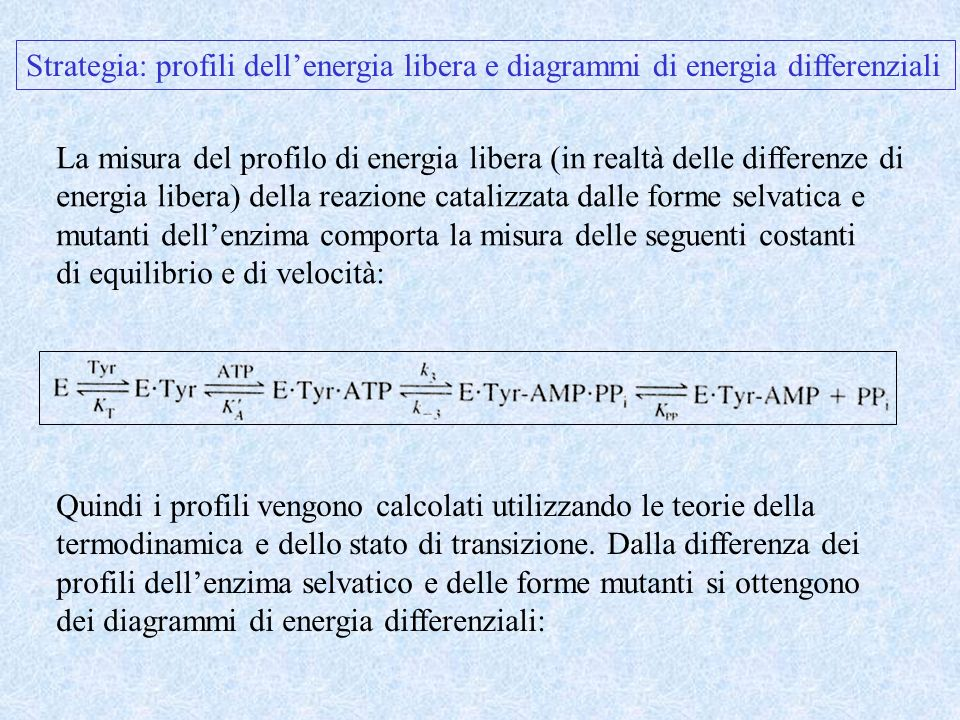 Strategia: profili dell'energia libera e diagrammi di energia differenziali