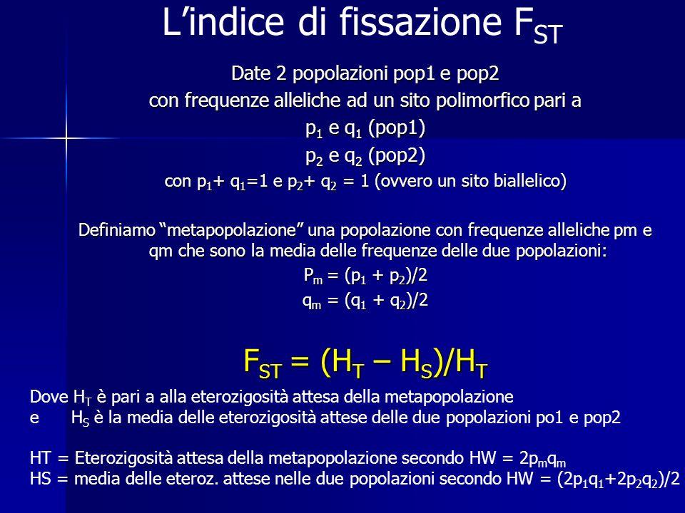 L'indice di fissazione FST