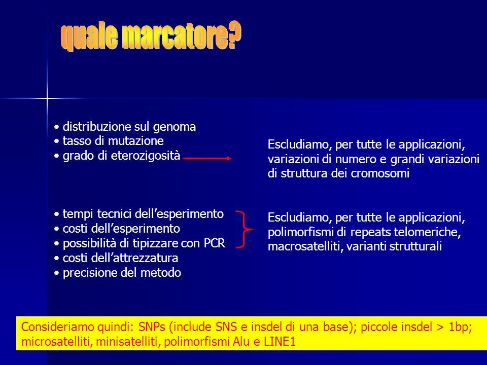 quale marcatore distribuzione sul genoma tasso di mutazione