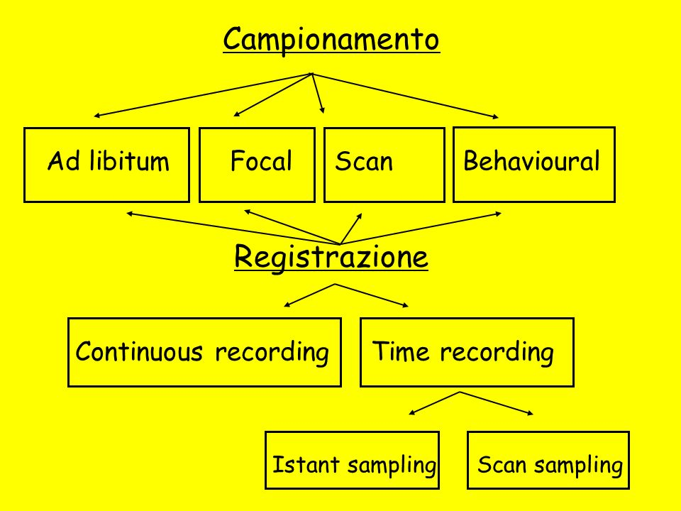 Campionamento Registrazione Ad libitum Focal Scan Behavioural