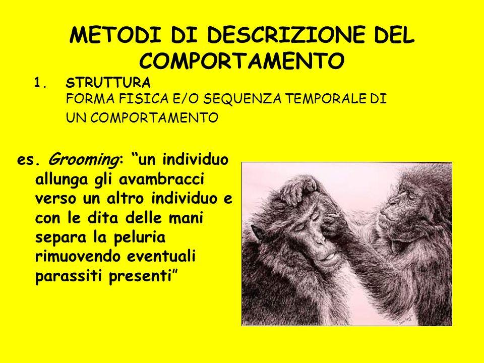 METODI DI DESCRIZIONE DEL COMPORTAMENTO