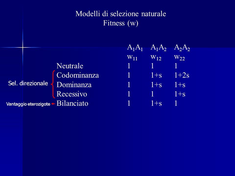 Modelli di selezione naturale