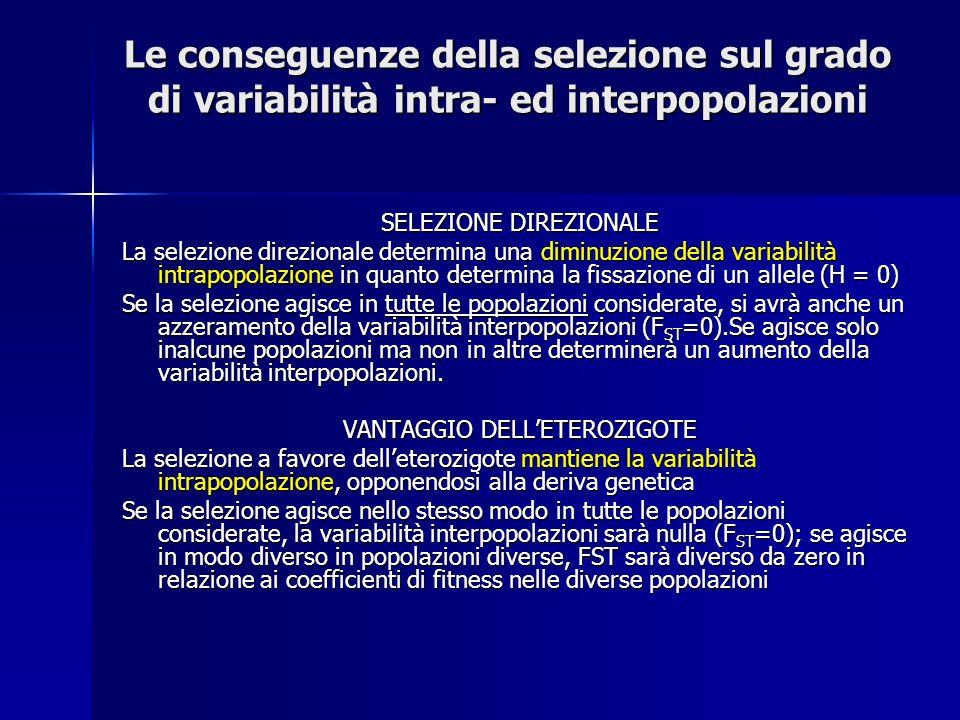 Le conseguenze della selezione sul grado di variabilità intra- ed interpopolazioni