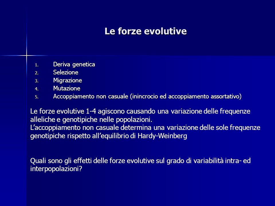Le forze evolutive Deriva genetica. Selezione. Migrazione. Mutazione. Accoppiamento non casuale (inincrocio ed accoppiamento assortativo)