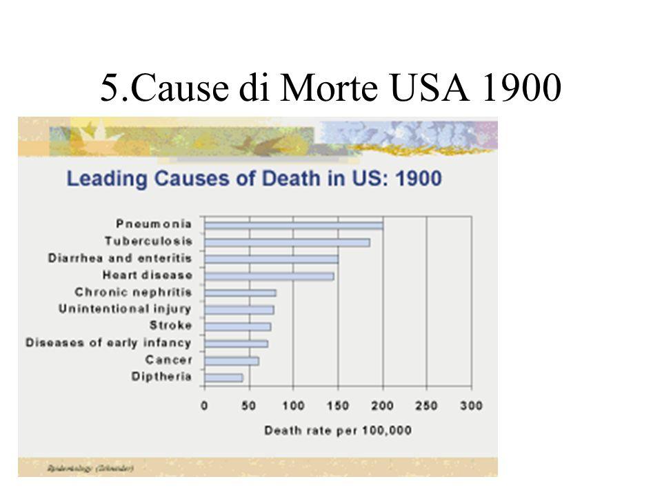 5.Cause di Morte USA 1900