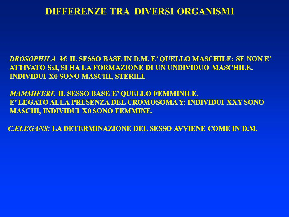 DIFFERENZE TRA DIVERSI ORGANISMI