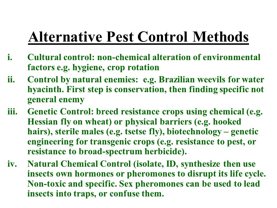 Alternative Pest Control Methods