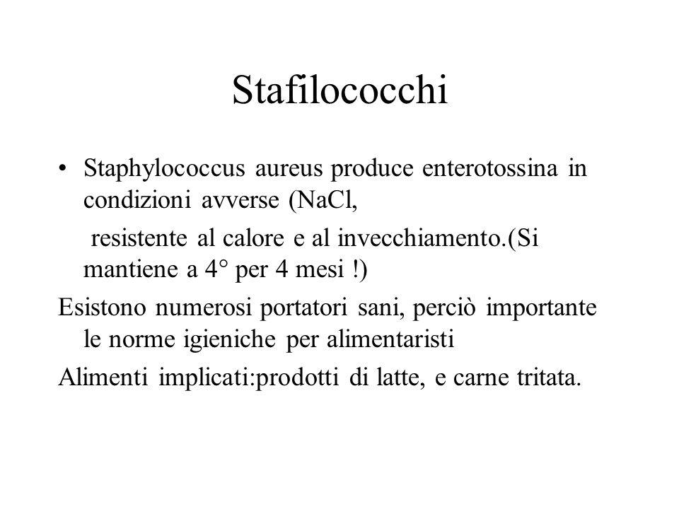 Stafilococchi Staphylococcus aureus produce enterotossina in condizioni avverse (NaCl,