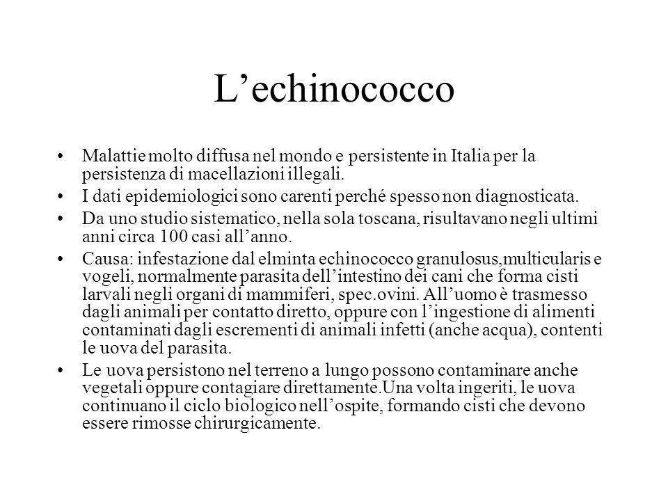 L'echinococco Malattie molto diffusa nel mondo e persistente in Italia per la persistenza di macellazioni illegali.