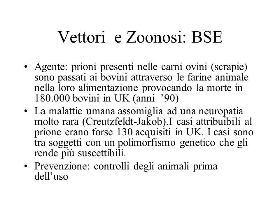 Vettori e Zoonosi: BSE