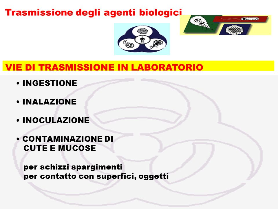 Trasmissione degli agenti biologici