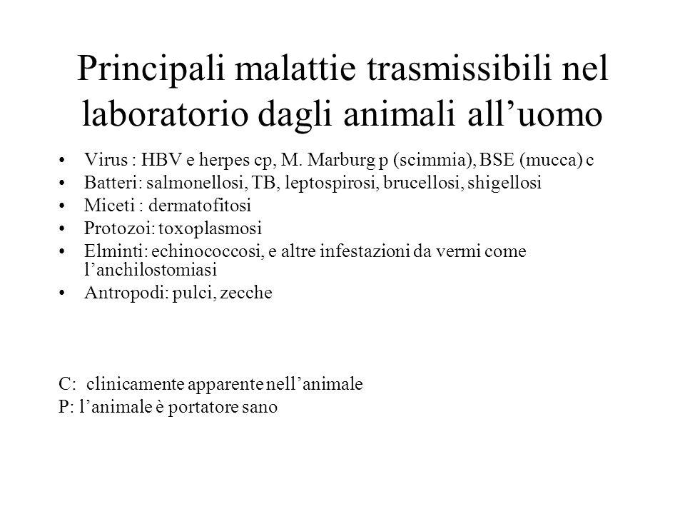 Principali malattie trasmissibili nel laboratorio dagli animali all'uomo