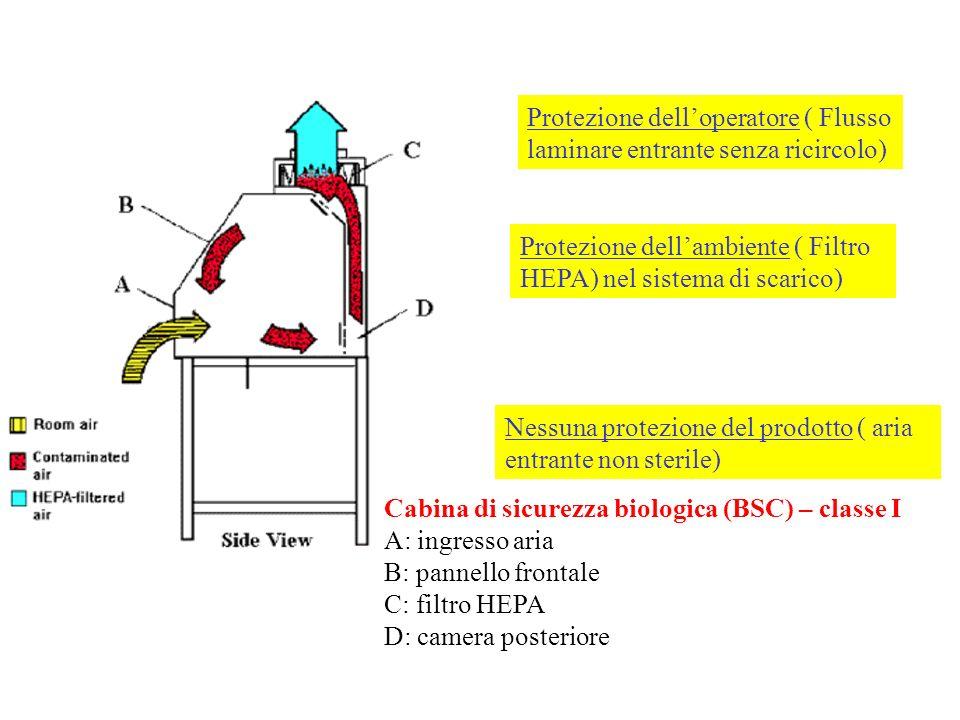Protezione dell'operatore ( Flusso laminare entrante senza ricircolo)