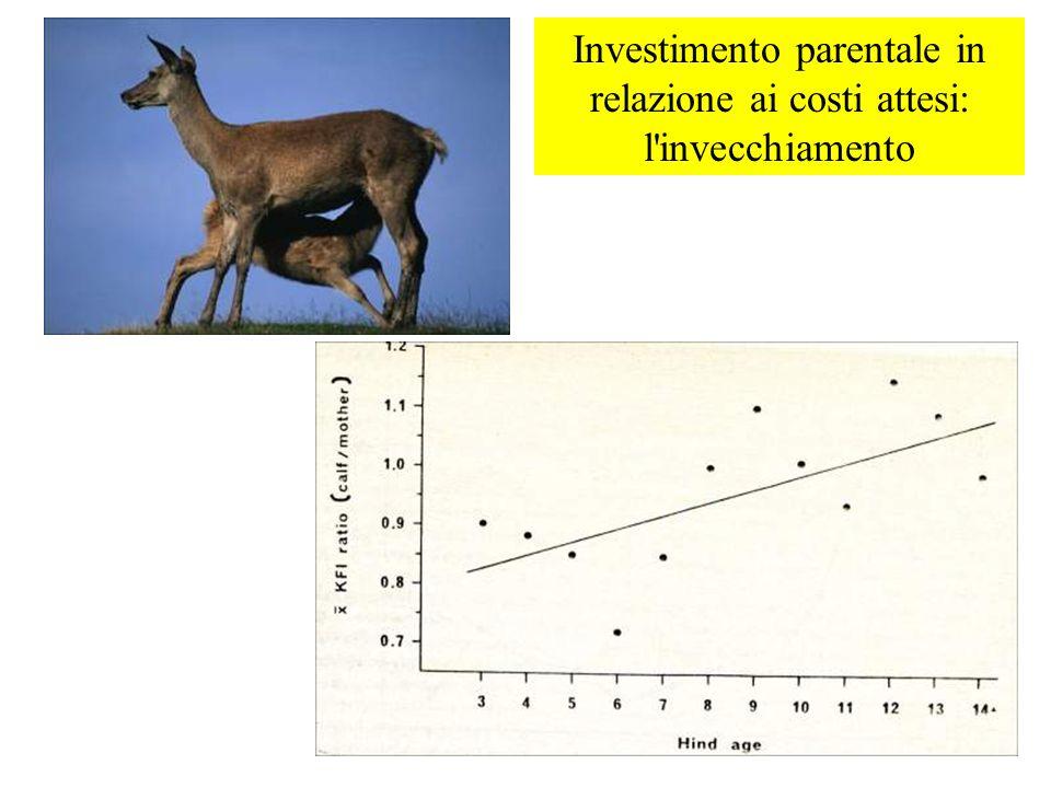 Investimento parentale in relazione ai costi attesi: l invecchiamento