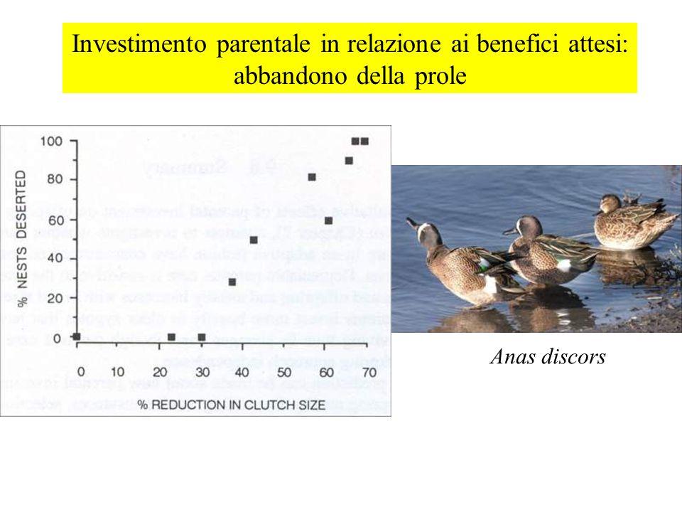 Investimento parentale in relazione ai benefici attesi: