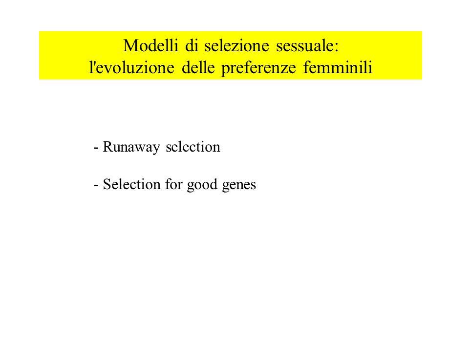 Modelli di selezione sessuale: l evoluzione delle preferenze femminili