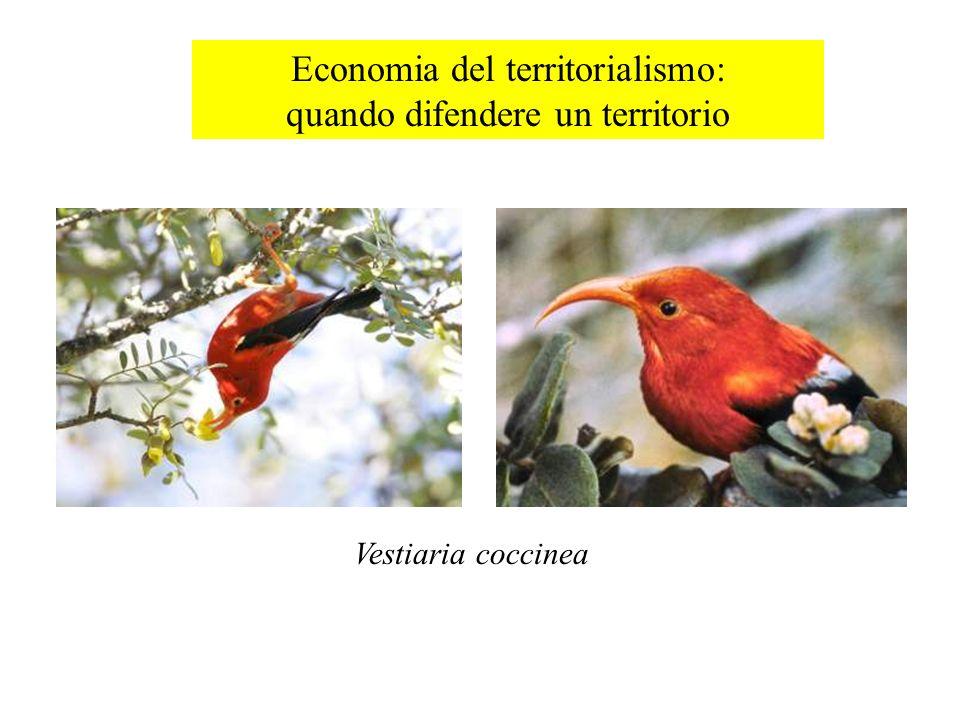 Economia del territorialismo: quando difendere un territorio