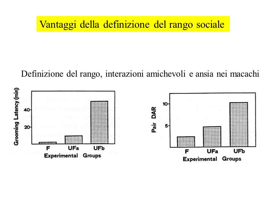 Vantaggi della definizione del rango sociale