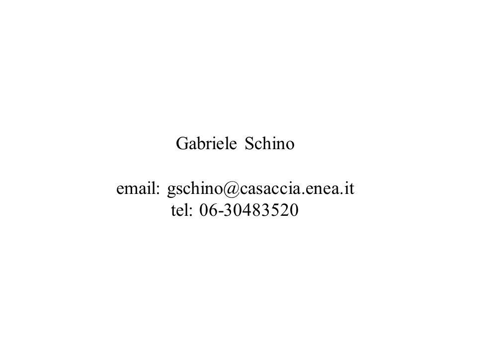 Gabriele Schino email: gschino@casaccia.enea.it tel: 06-30483520