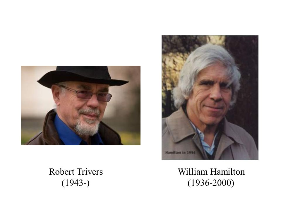 Robert Trivers (1943-) William Hamilton (1936-2000)