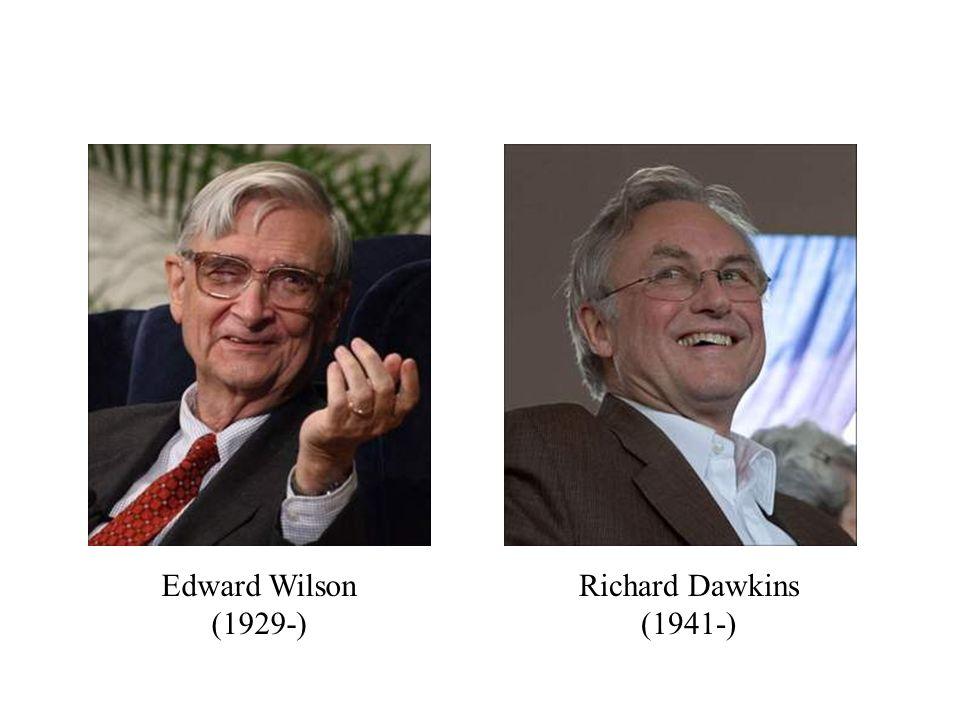 Edward Wilson (1929-) Richard Dawkins (1941-)