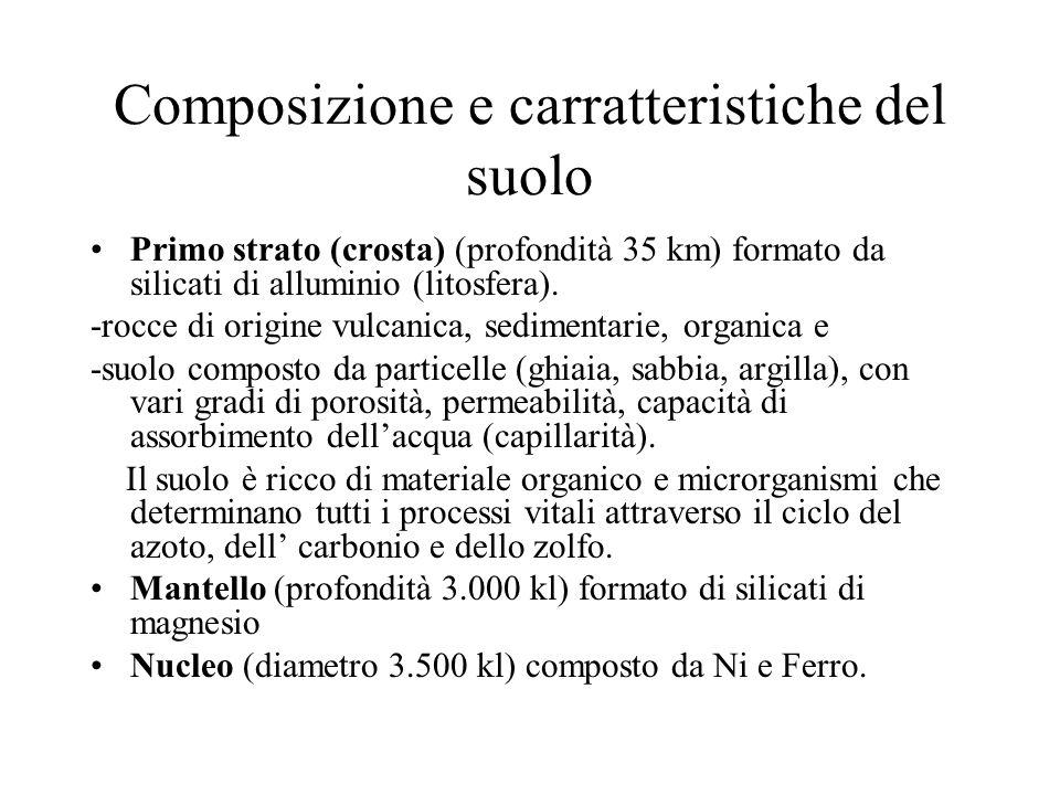 Composizione e carratteristiche del suolo