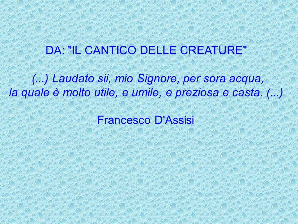 DA: IL CANTICO DELLE CREATURE (