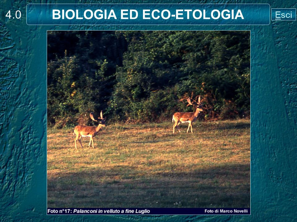 BIOLOGIA ED ECO-ETOLOGIA