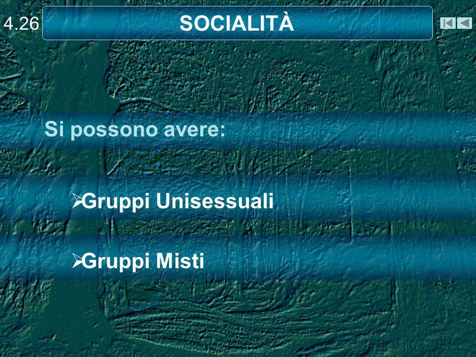 4.26 SOCIALITÀ Si possono avere: Gruppi Unisessuali Gruppi Misti