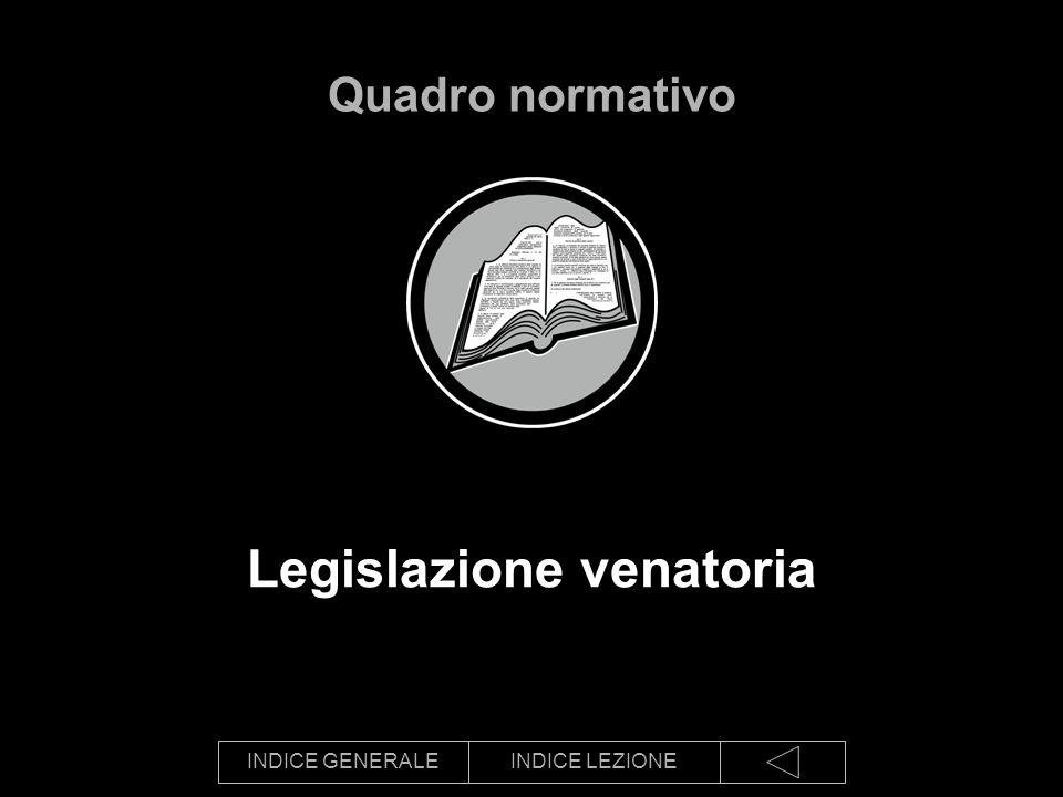Legislazione venatoria