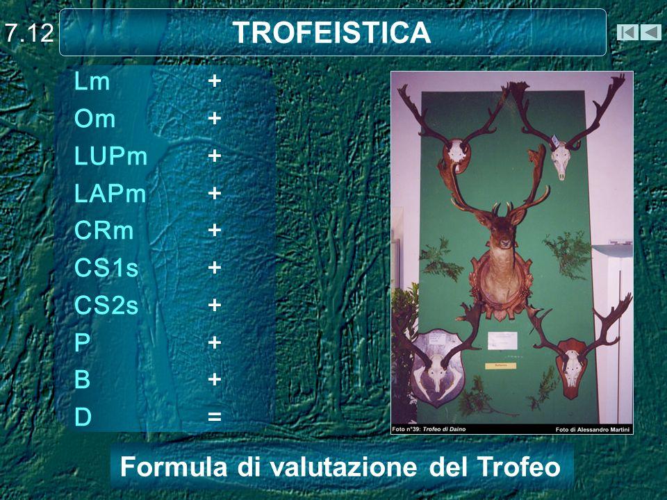 TROFEISTICA Formula di valutazione del Trofeo 7.12
