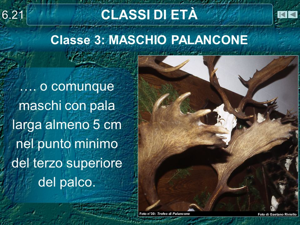Classe 3: MASCHIO PALANCONE
