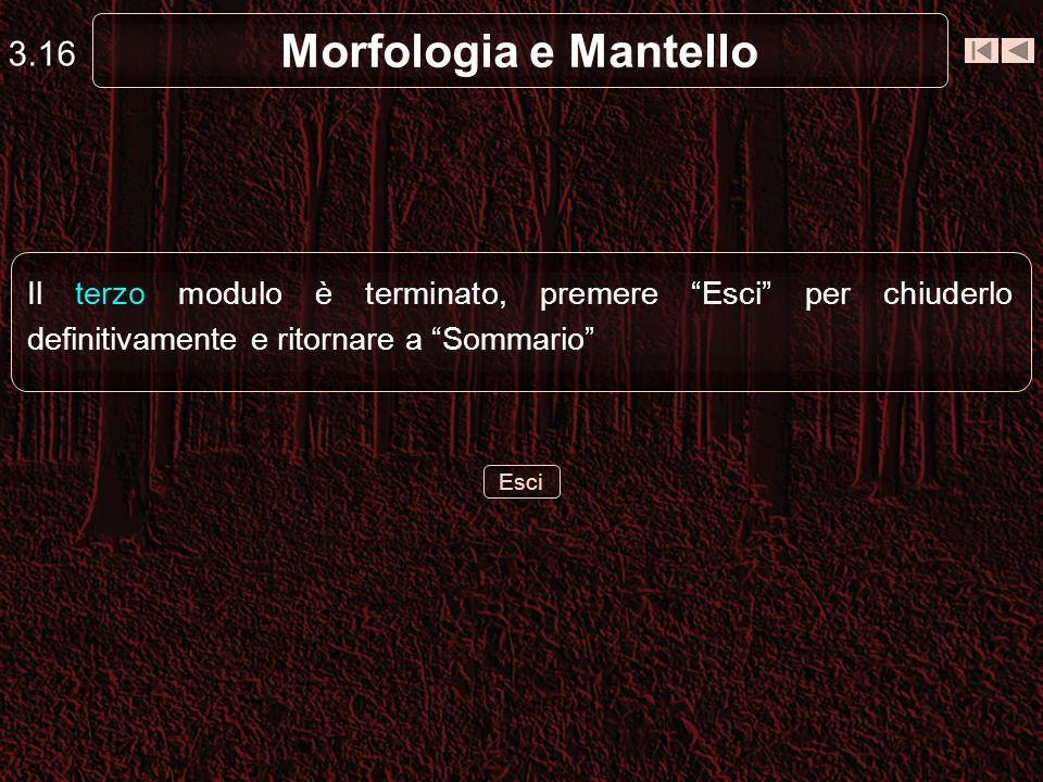 3.16 Morfologia e Mantello. Il terzo modulo è terminato, premere Esci per chiuderlo definitivamente e ritornare a Sommario