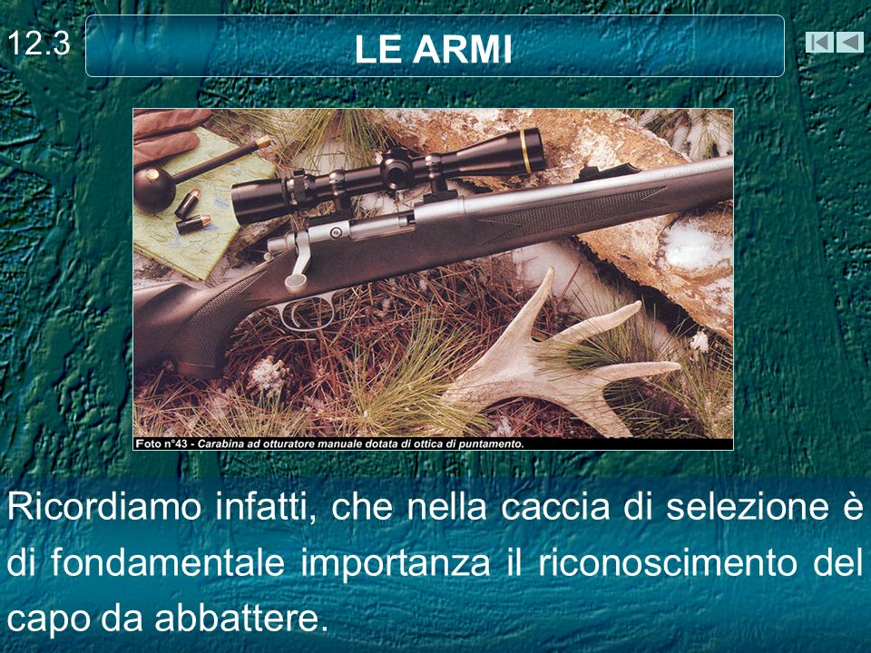 12.3 LE ARMI.