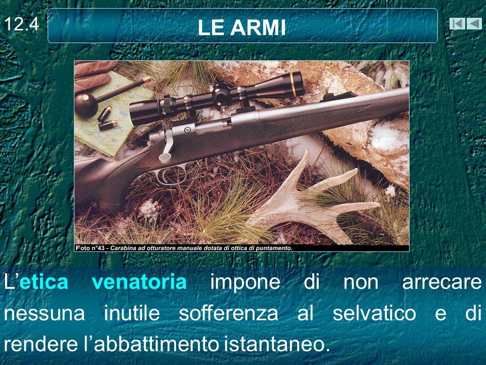 12.4 LE ARMI.